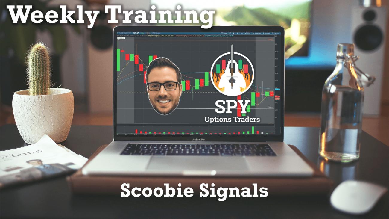 weekly training_ scoobie signals
